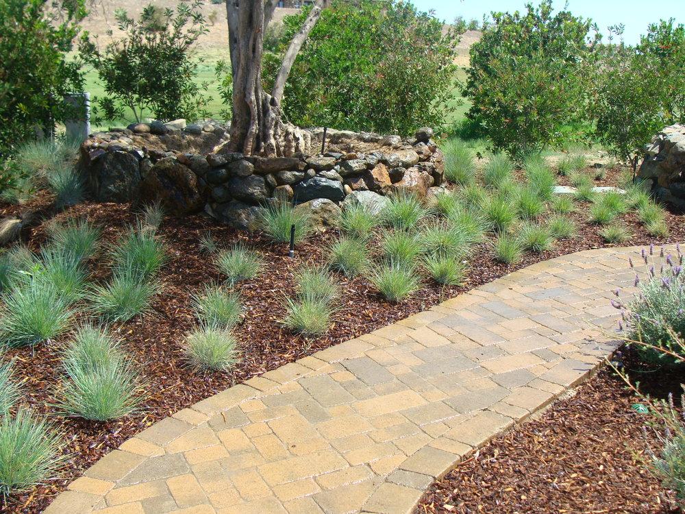 Landscaping web pics 302.JPG