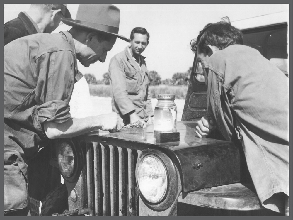Edward F. Knipling (left) and colleagues doing field research. Photo courtesy of World Food Prize Foundation.