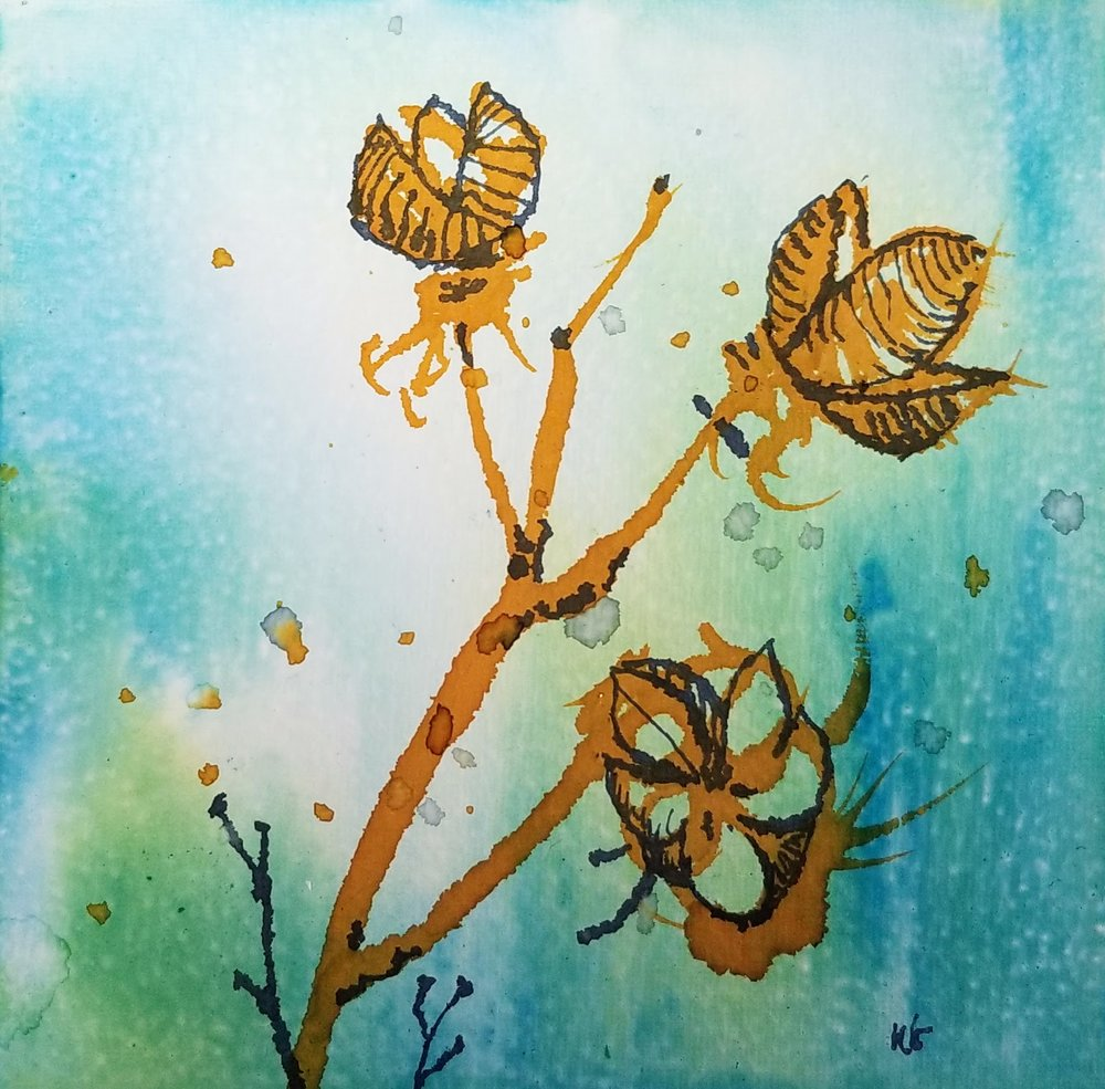 Winter Plants Series: #2