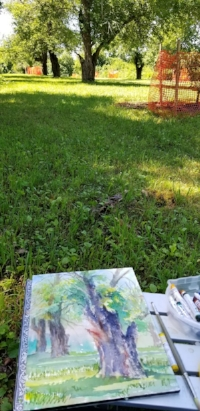Plein air painting at Heard farm in Wayland. The old orchard has rows of very old apple trees, many limbs lost over the years, but still producing apples. I was inspired by the character of the old damaged trees and hoped to capture the strength and texture of their forms.