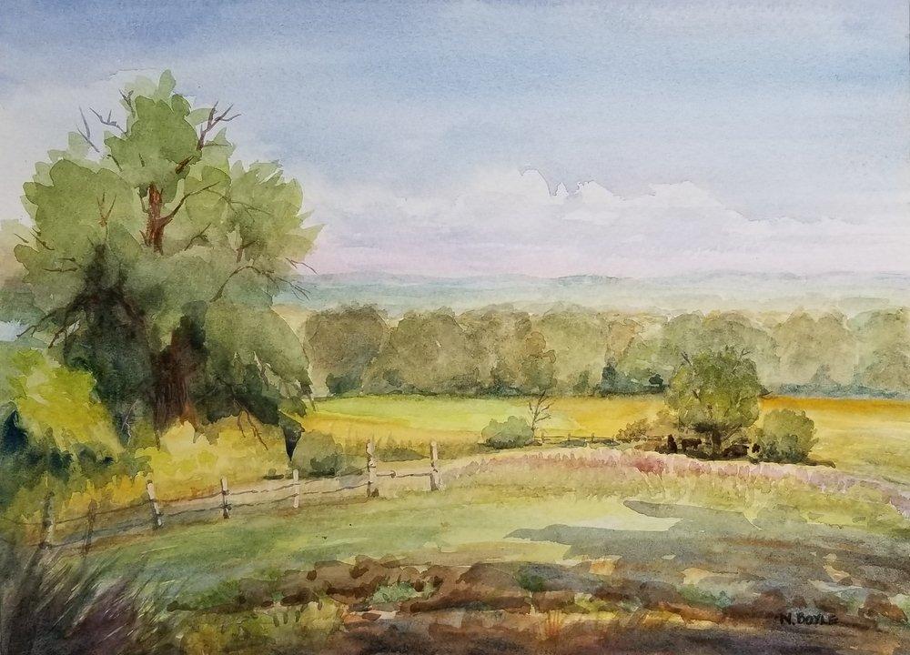 Mainstone Farm view