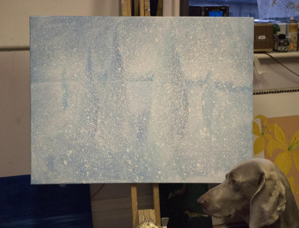 studio dog.jpg