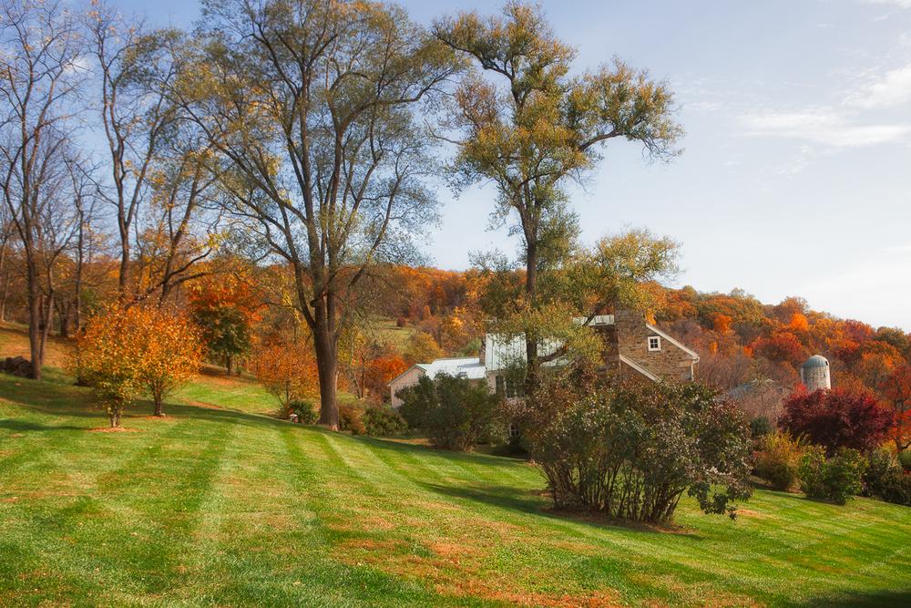 Hillside Vineyard in Virginia.