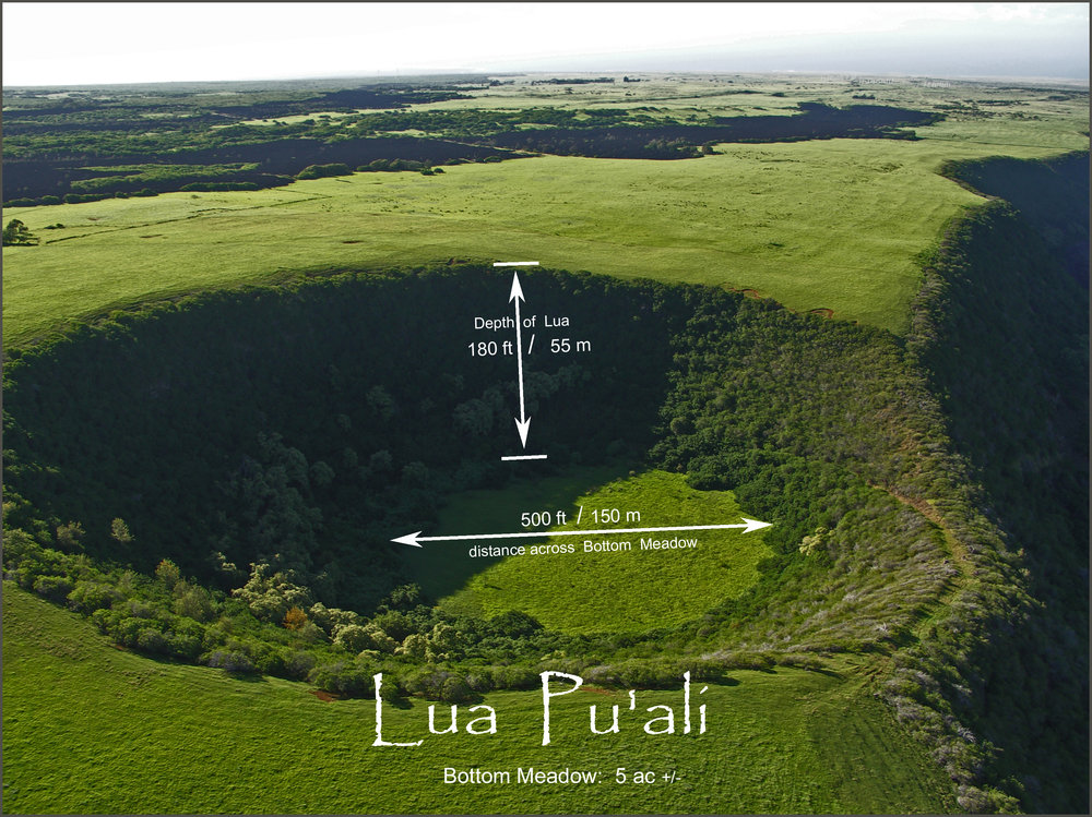 Lua Pu'ali finished.jpg