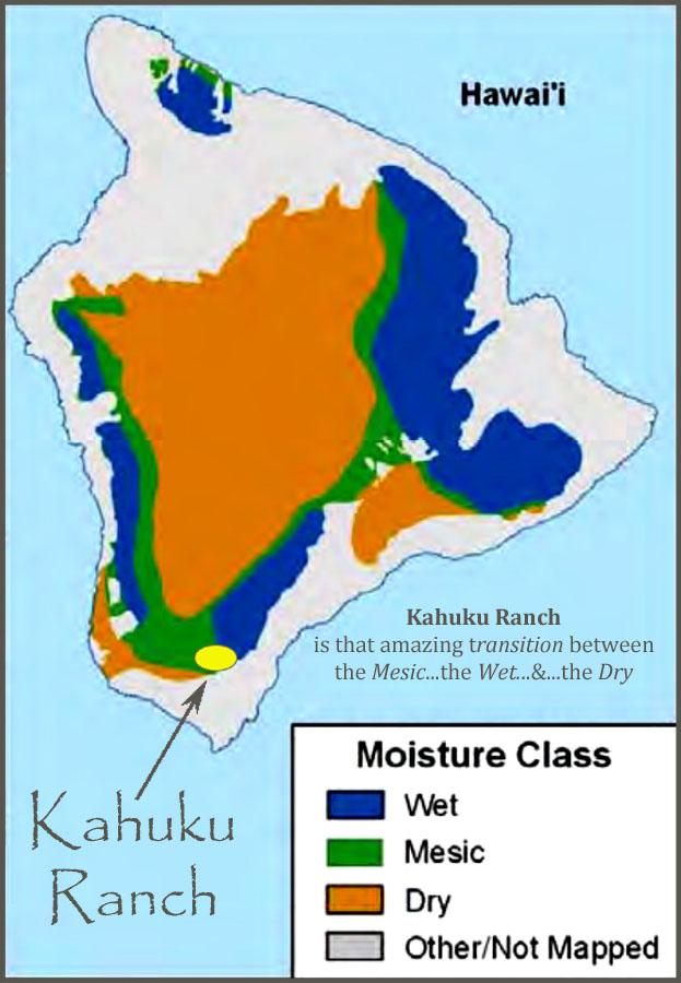 moisture map finished.jpg