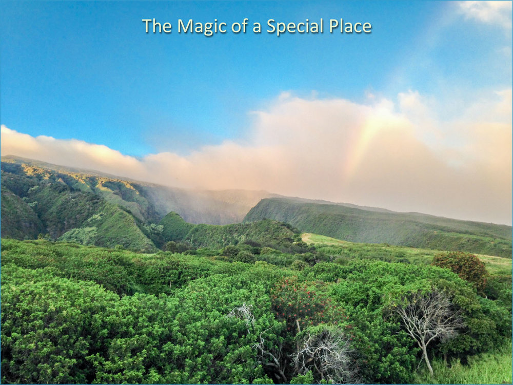 magic of special place.jpg