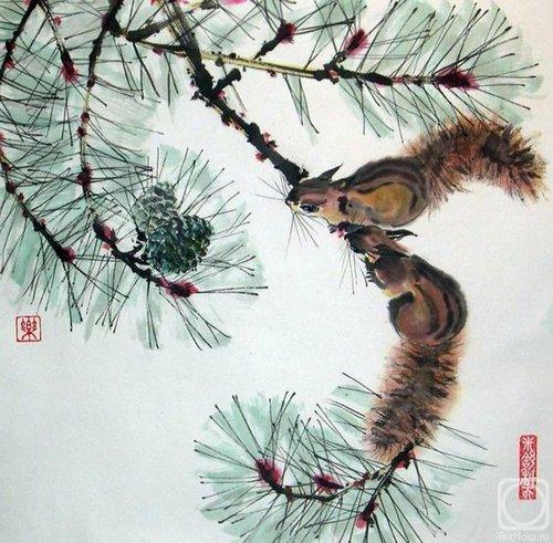 Pine+tree+branches+8.jpg