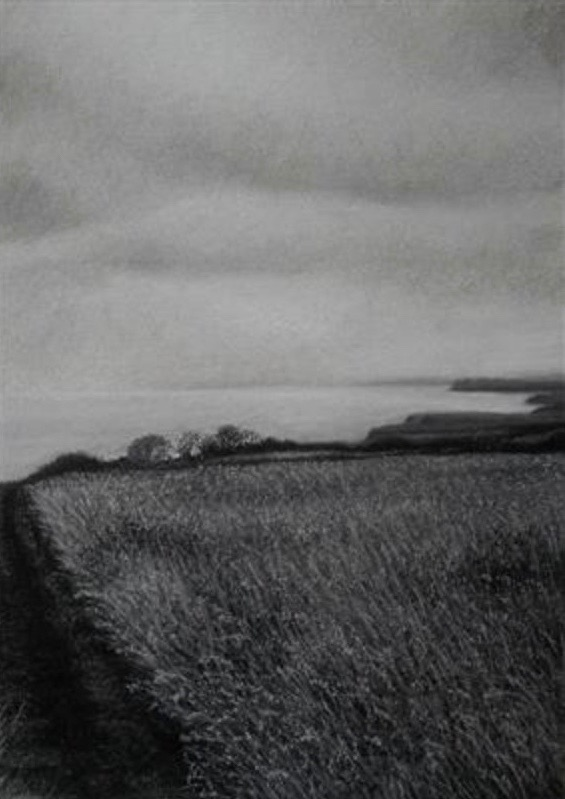 Charcoal on watercolour paper by Linda Brill