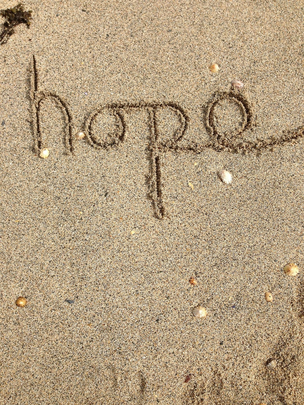 Hope for Recovery from Eating Disorders