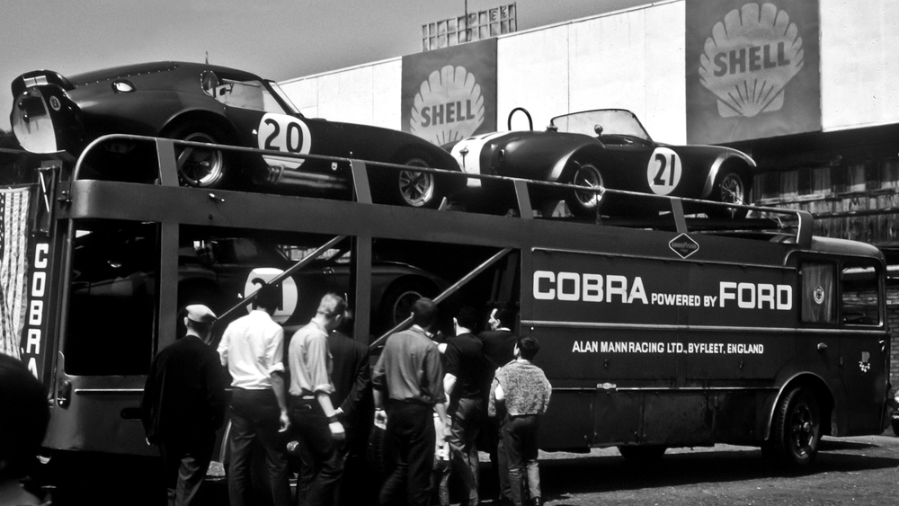 cobra-2.jpg