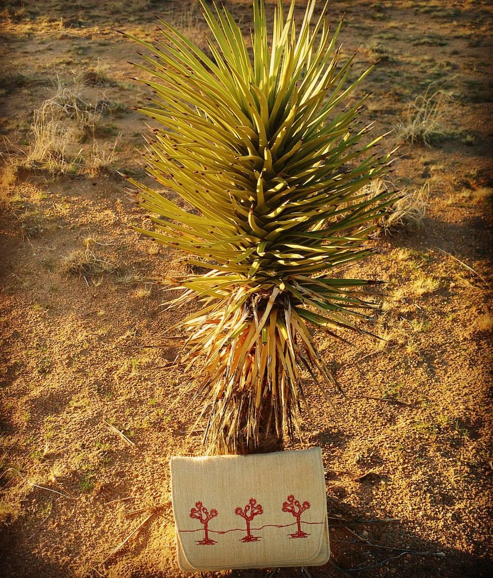 #desertsunbrand #joshuatree #embroidery (at Joshua Tree National Park)