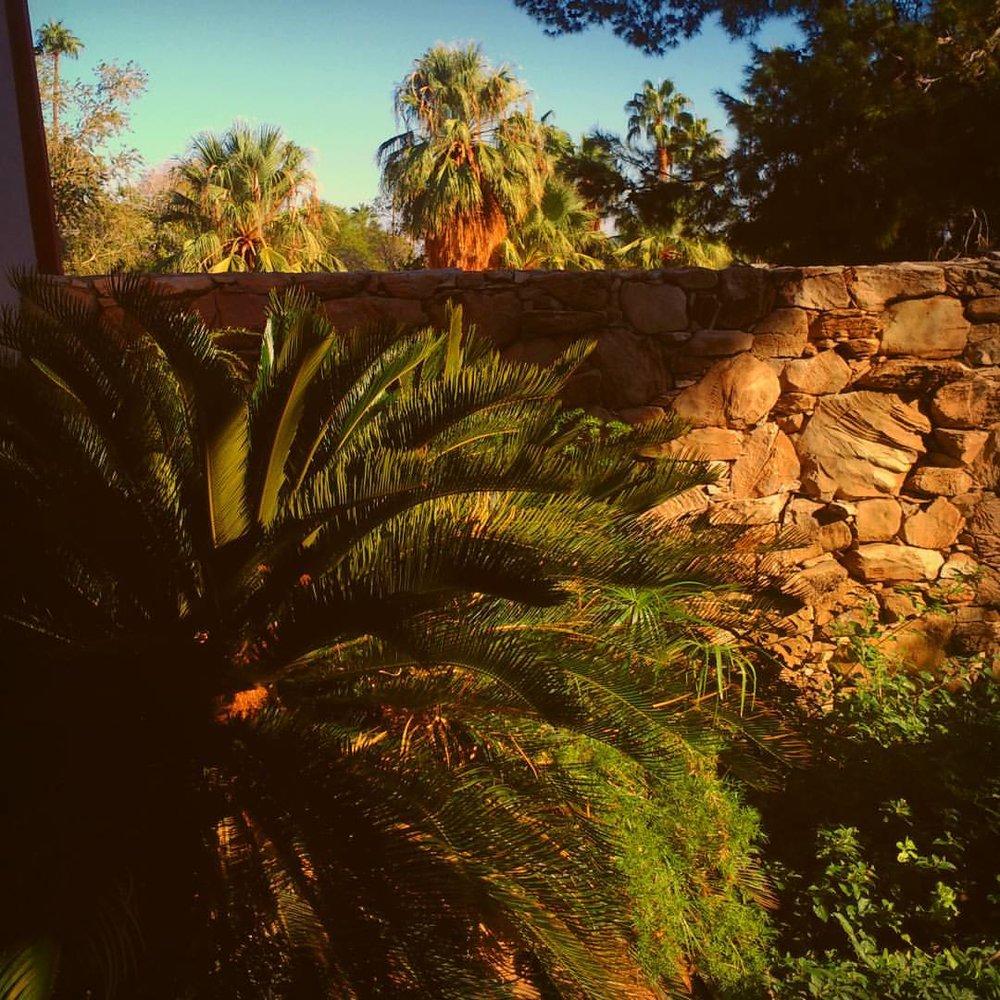 at Palm Springs, California