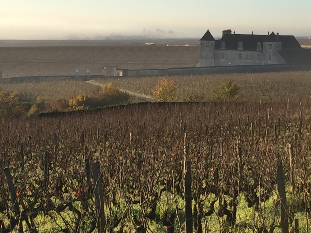 View from les Amoureuses over the Chateau de Vougeot and the early morning fog over the plain