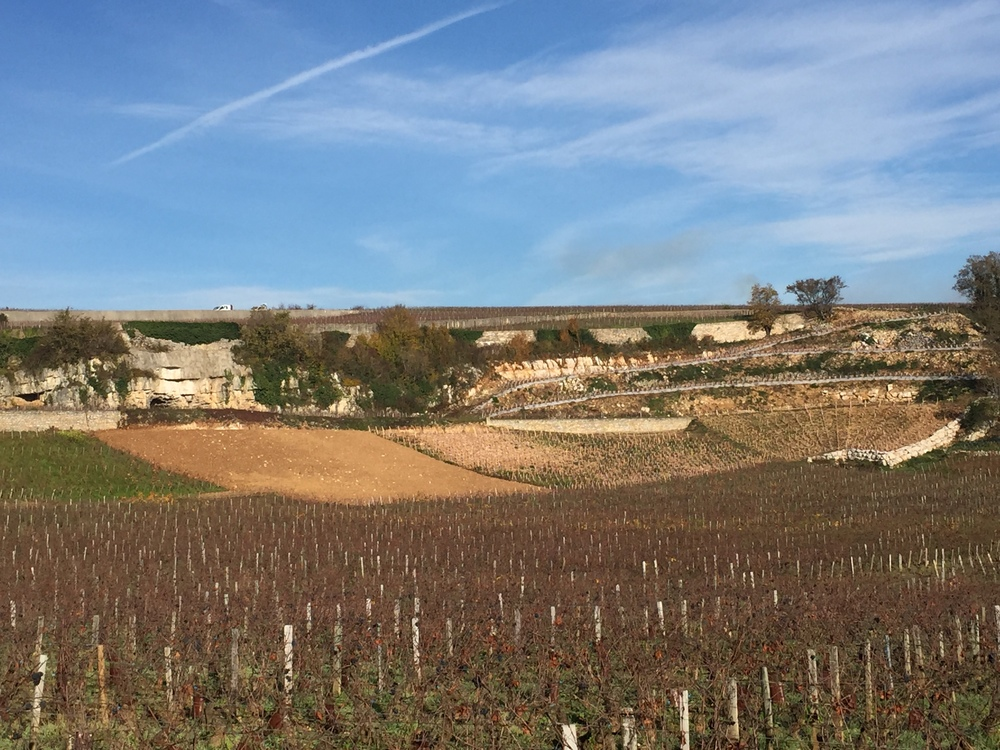 The quarry below Musigny and Amoureuses. Terroir on open display...