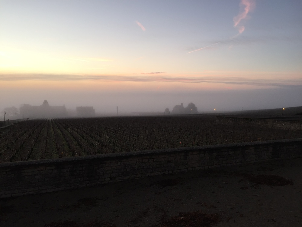 A cold fog over Volnay this morning...