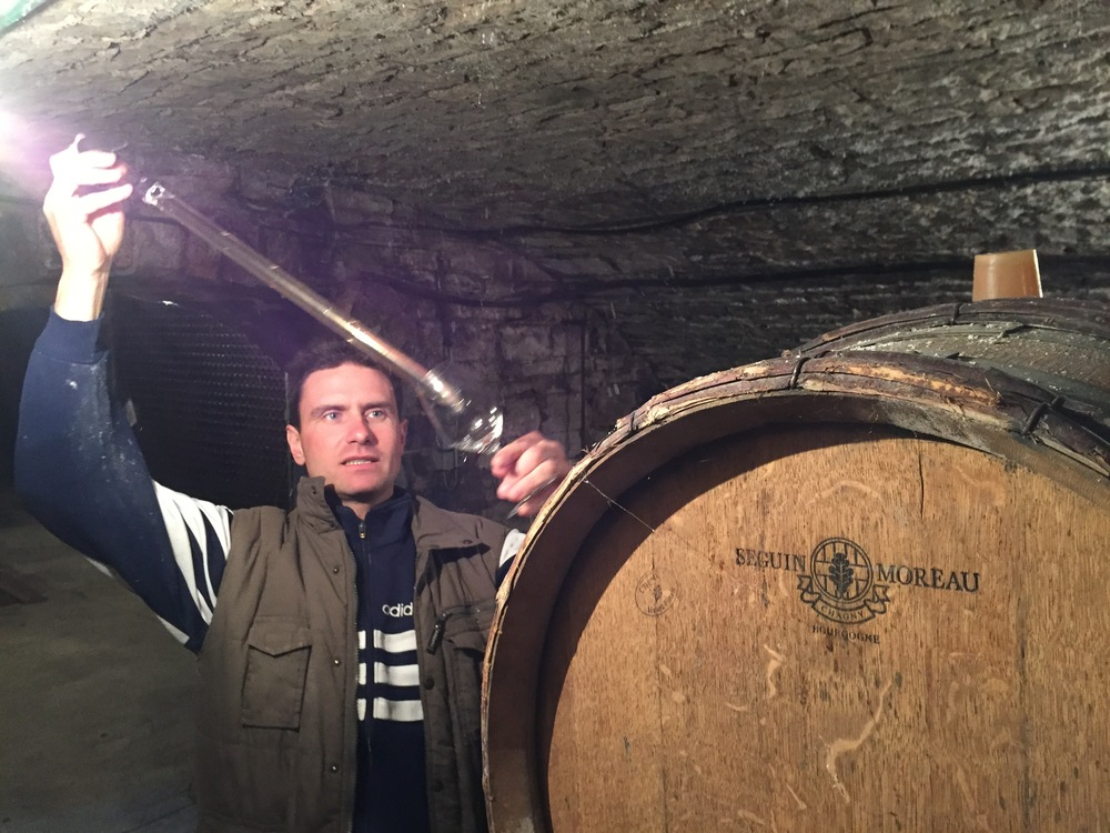 In the cellar with Vincent Couche