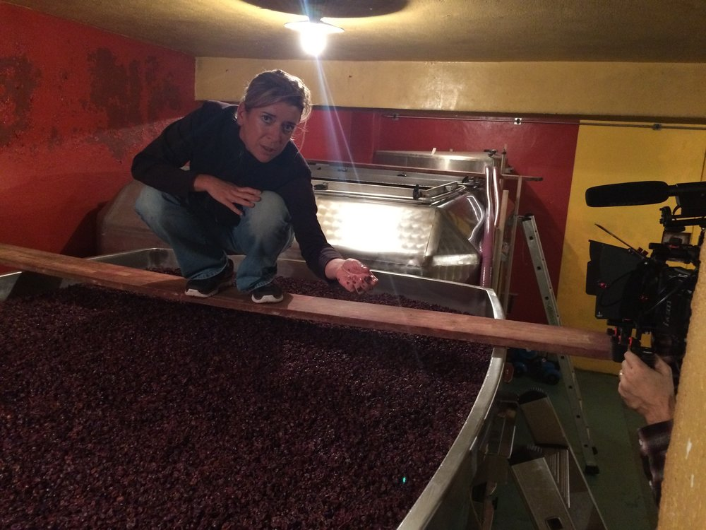 Alexandrine Roy , happy with the beautiful fruit in her tanks in Gevrey-Chambertin