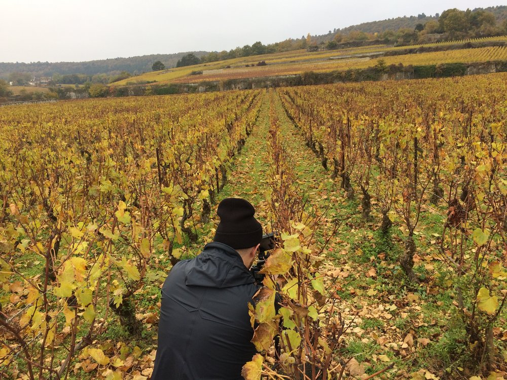 "Shooting the ""Golden Slope"" in Meursault"
