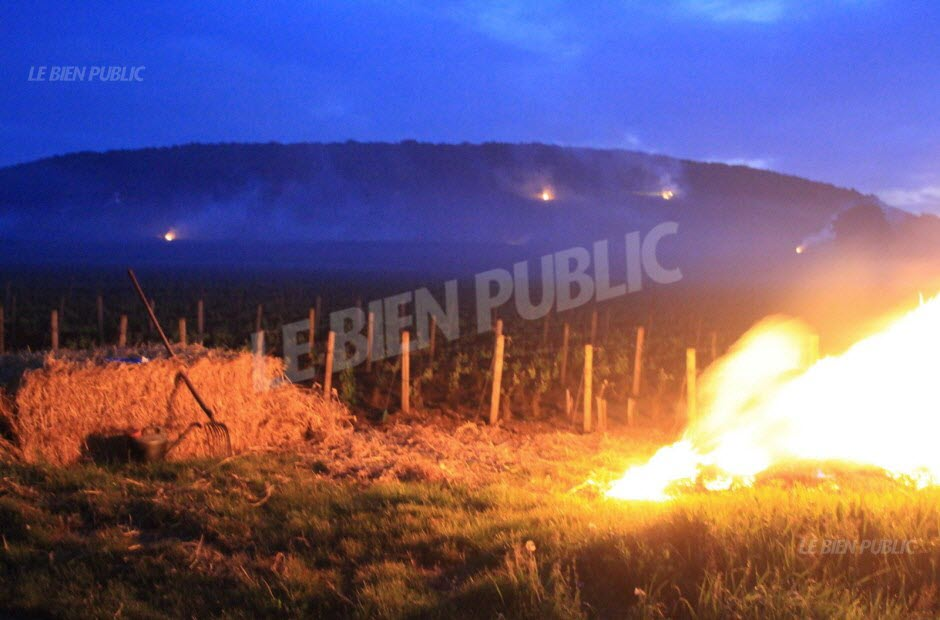 Burning straw bales in Savigny-lès-Beaune