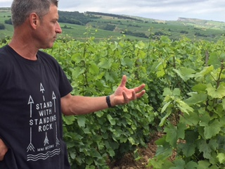 In the vineyards with Fabio at Chateau des Rontets