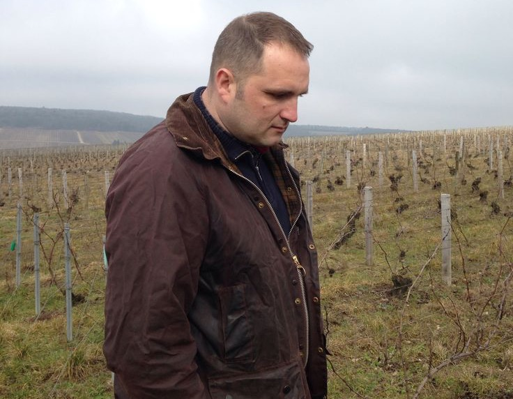 Jérôme Coessens in his vines at l'Argillier