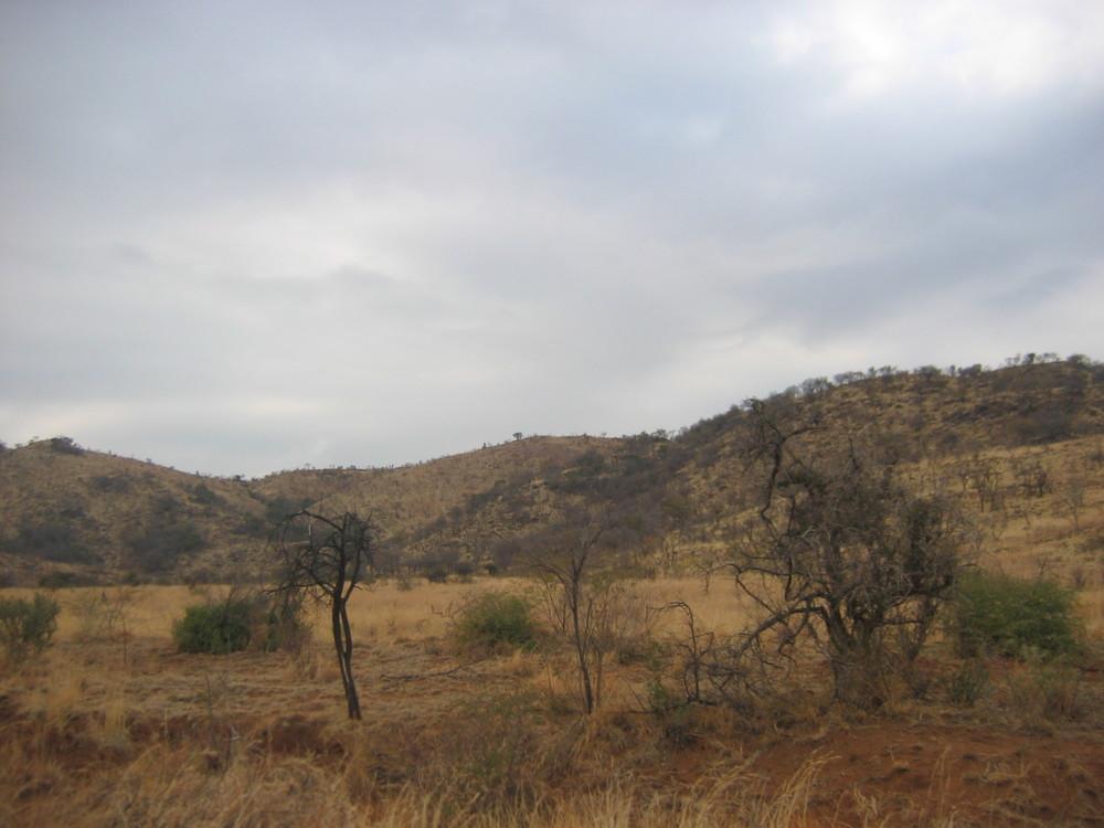 Zimbabwe2007 032.jpg