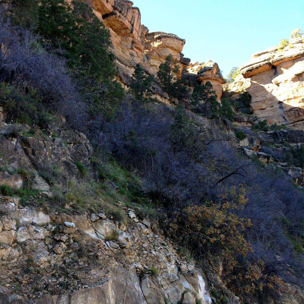 ArizonaPhoto3.jpg