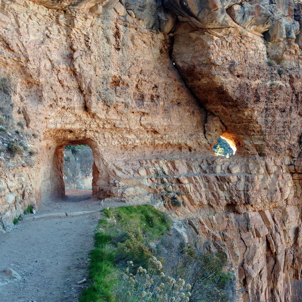 ArizonaPhoto2.jpg