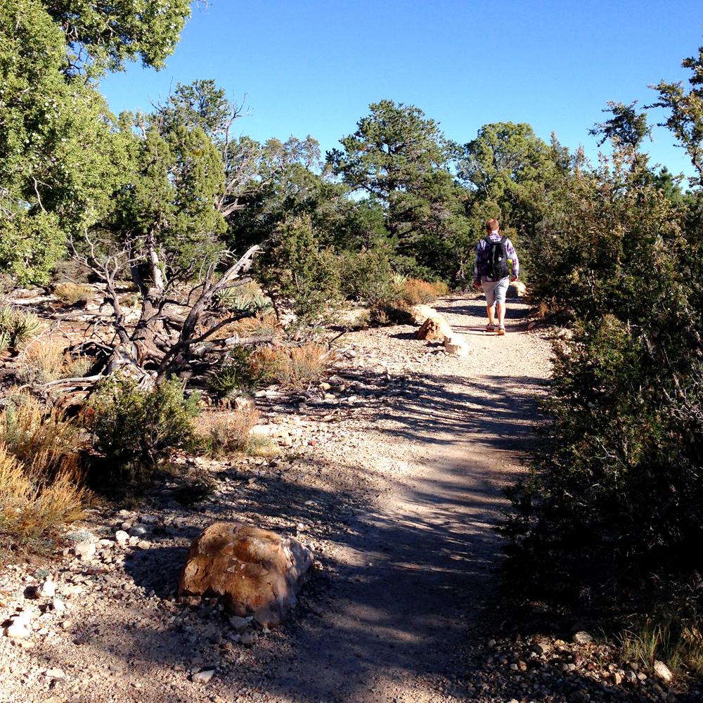 ArizonaPhoto5.jpg