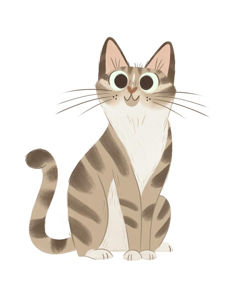 tabby-cat.jpg