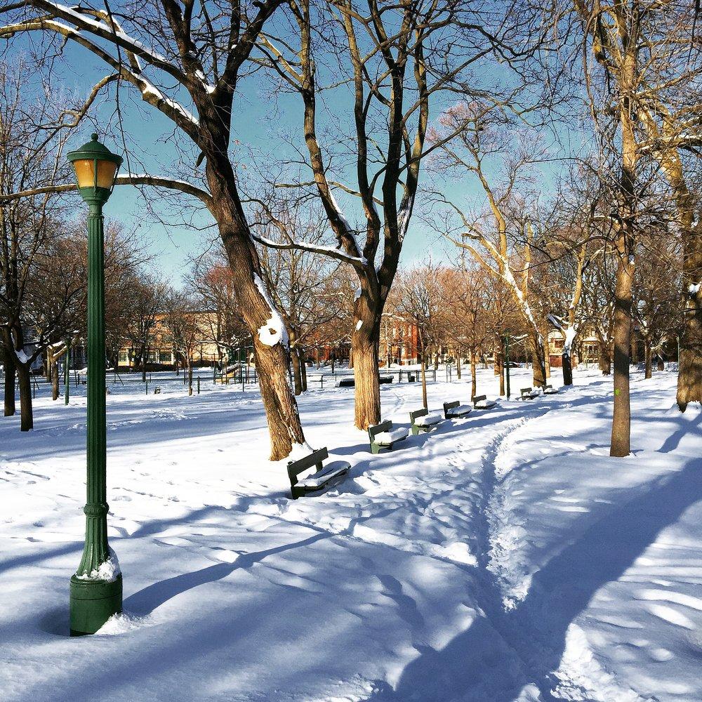 Parc Outremont, December 2016