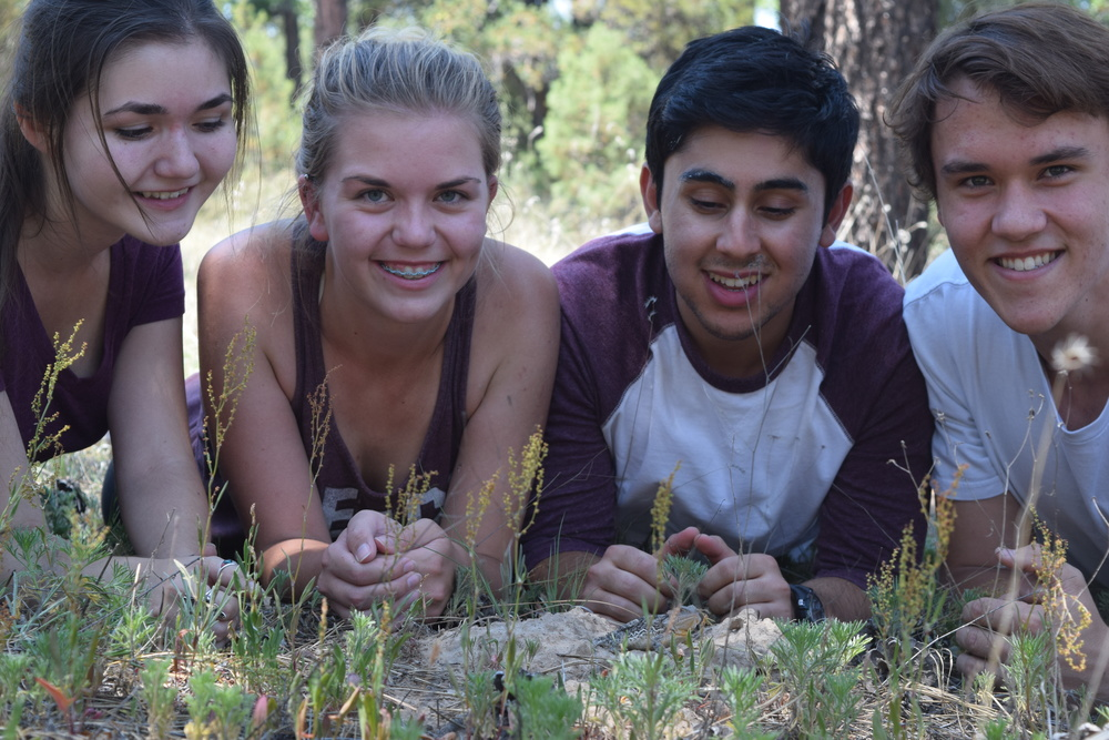 Students in the field with a greater short-horned lizard (Phrynosoma hernandesi, at bottom)