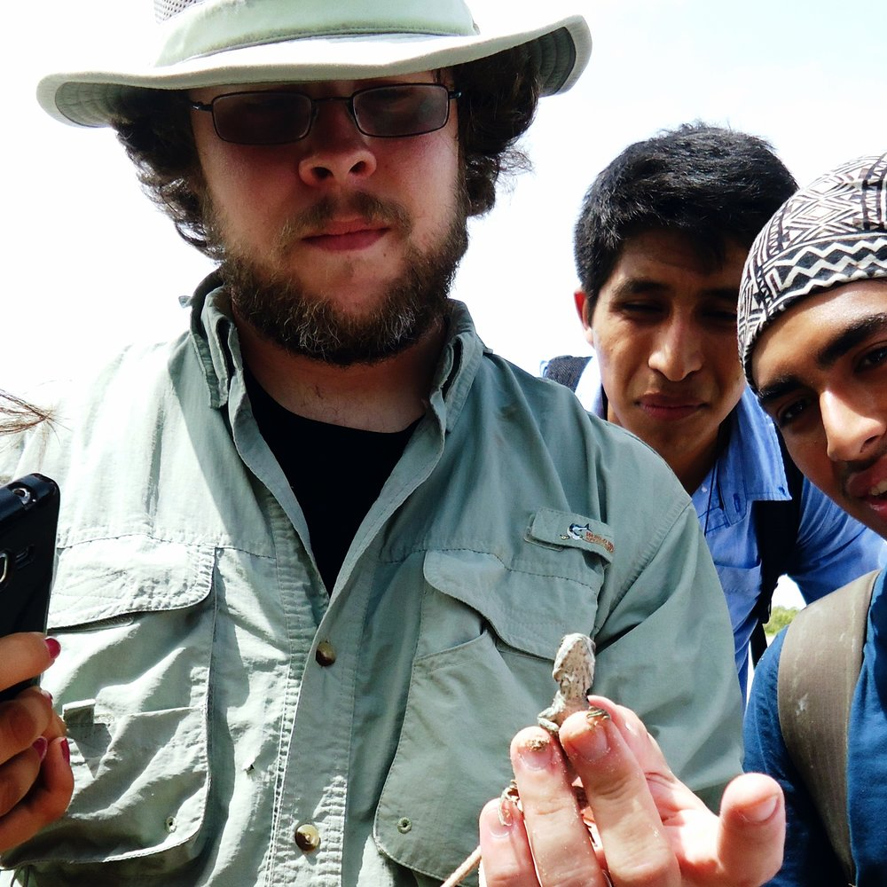 Rory in the field showing students a juvenile spiny-tailed iguana ( Ctenosaura similis )