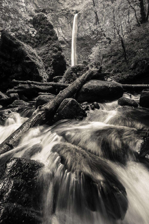 Elowah Falls (black & white)