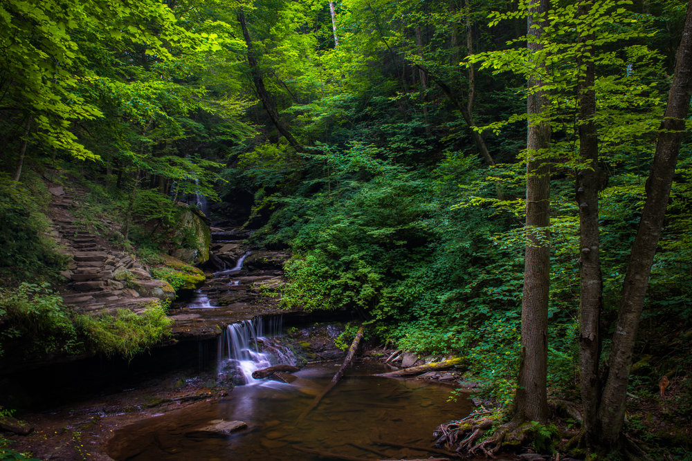 RickettsGlen_080516.CVB_527508-Edit.1500px.jpg