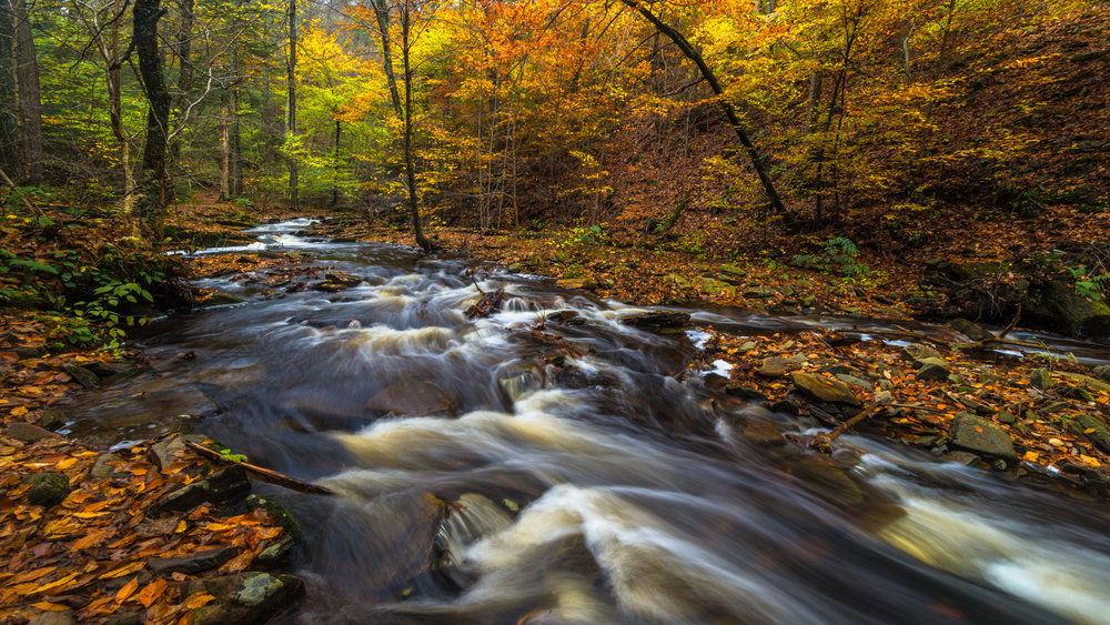 RickettsGlen_102816.CVB_7625-Edit.jpg