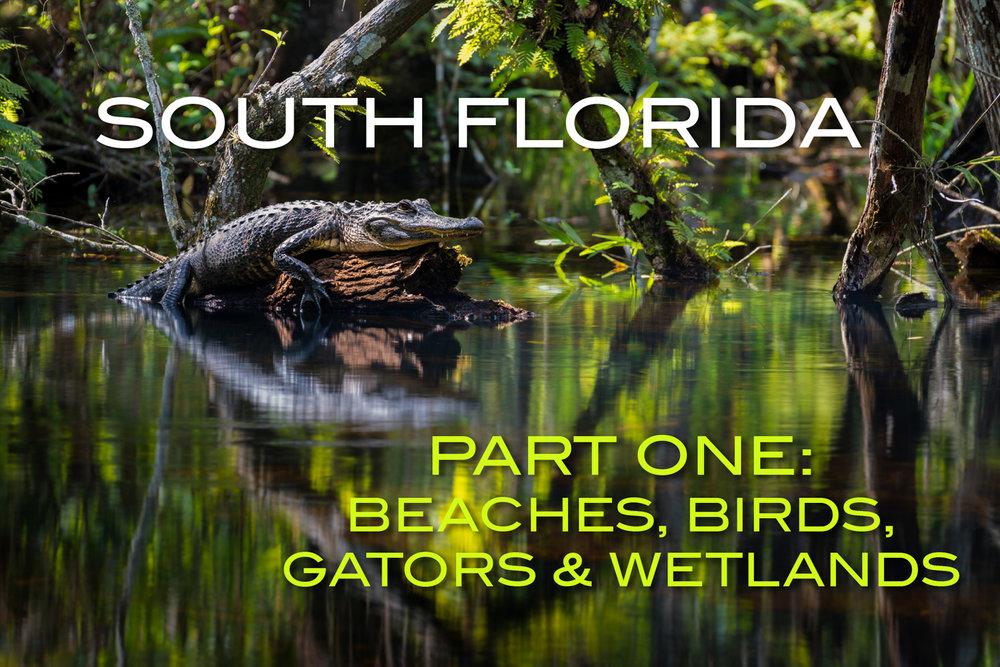 South Florida Pt 1 Cover-2.JPG