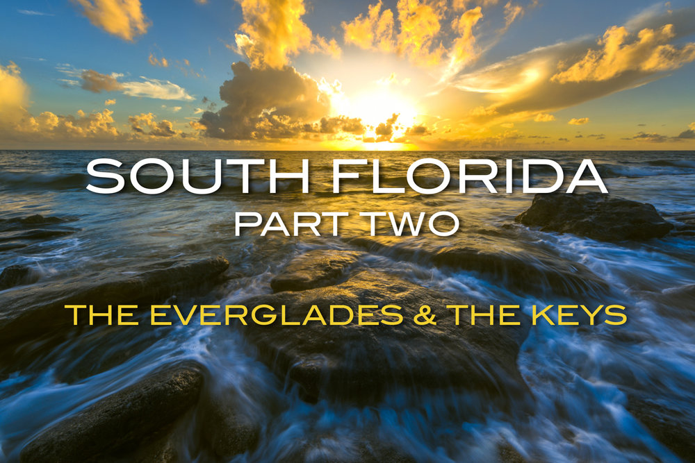South Florida 2-2.JPG