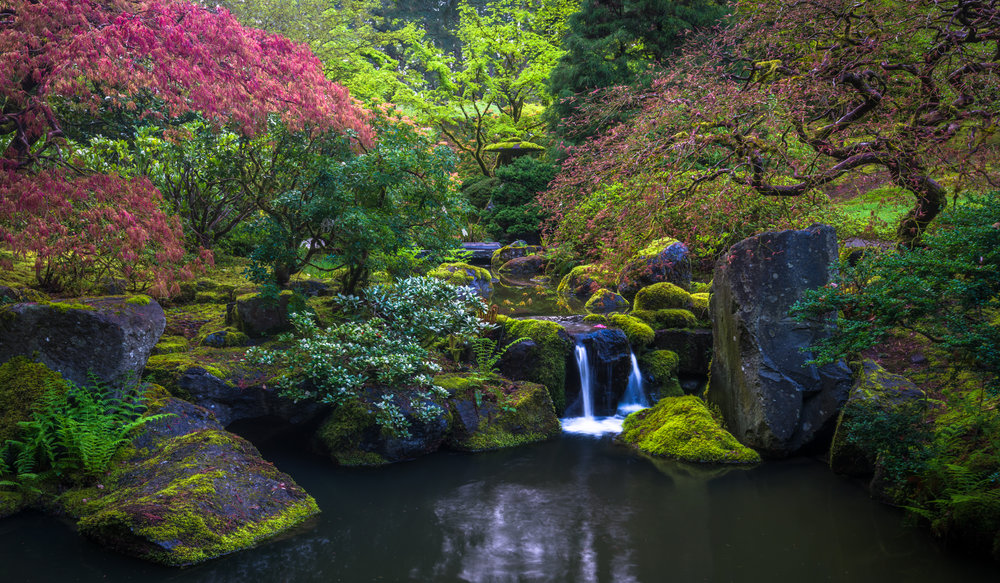 Oregon_042117._CVB8142-Edit.jpg
