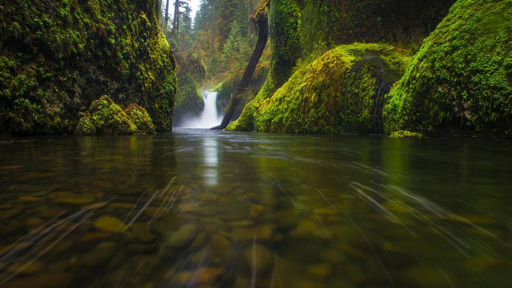 Oregon_042617._CVB9144-Edit-Edit.jpg