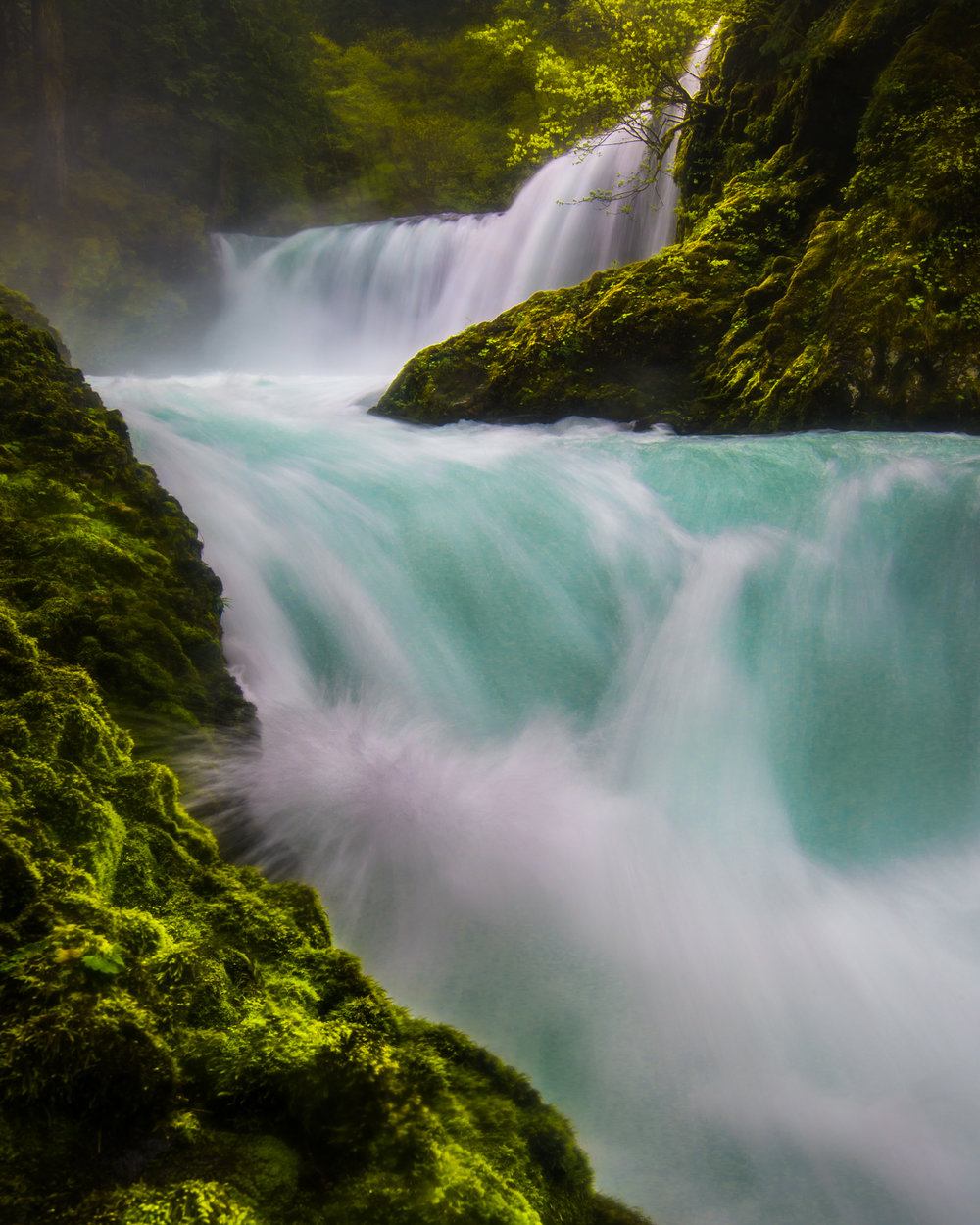 Oregon_042717._CVB9315-Edit.jpg