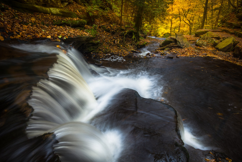 RickettsGlen_102317._CVB9616-Edit-Edit.jpg