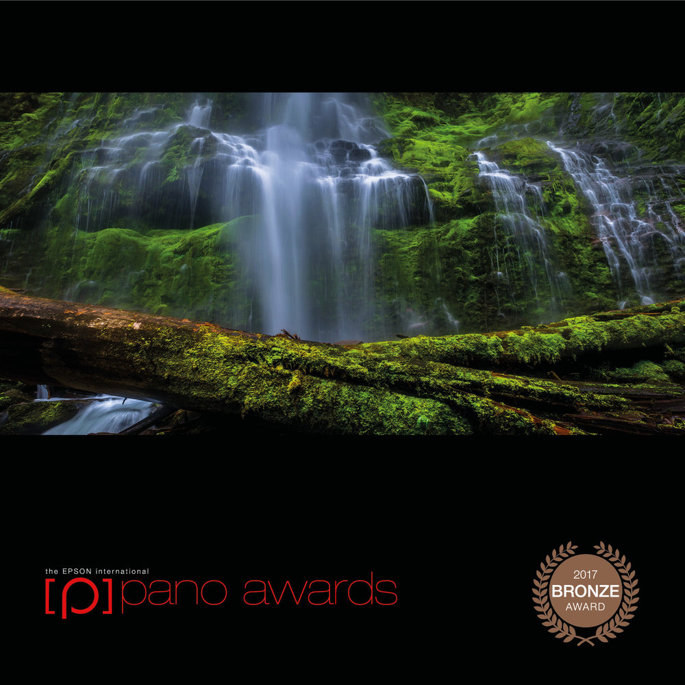 2017-Epson-Pano-Awards-Open-Bronze896.jpg