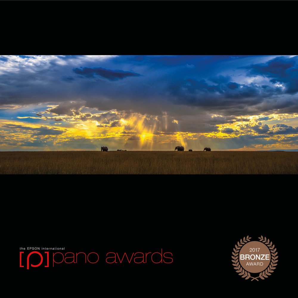 2017-Epson-Pano-Awards-Open-Bronze933.jpg