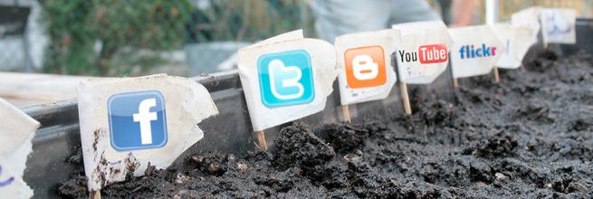 Social Media Garden by j&tplaman, on Flickr