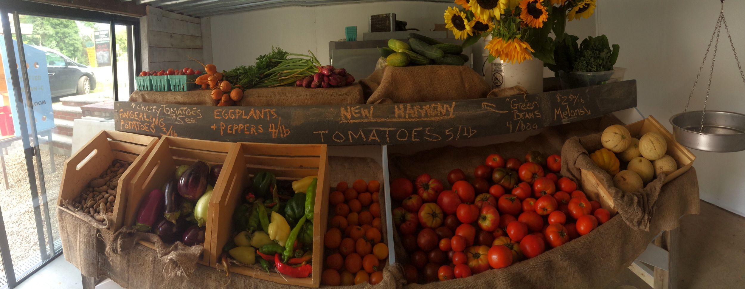My Daughter Izzy's Panoramic Photo of Our Newly Built Produce Table