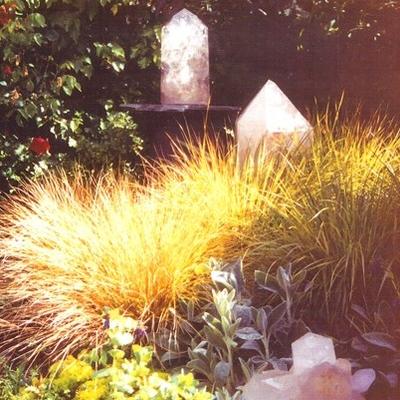 Marin Landscape designer 2.png