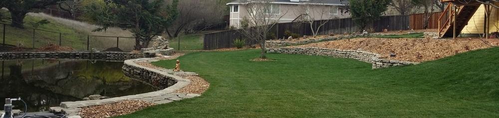 San Rafael Landscape Contractor.jpg
