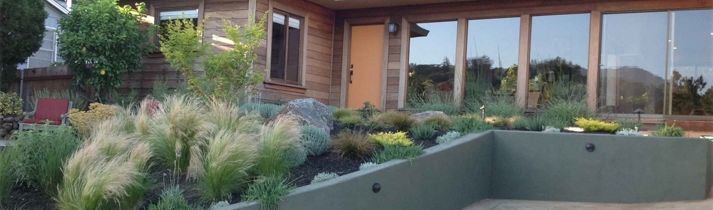 Marin Landscape Architect 18.jpg