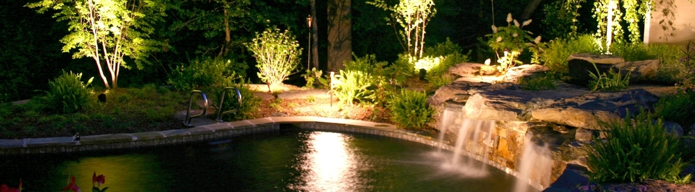 Novato Landscape Lighting.jpg